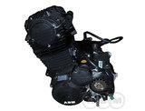 Двигатель Raptor 200 (2013 -)