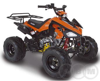 Квадроцикл ABM Scorpion 125A